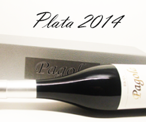 plata-2014-tumb