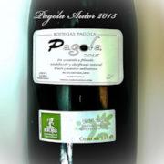 Vino Premium Pagola